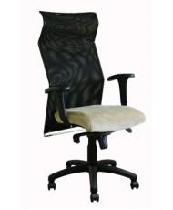 Купить недорого Кресло для руководителя с пластиком - СПАЙДЕР В 3213 в Украине