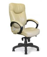 Купить недорого Кресло для руководителя с пластиком - МОНТЕРЕЙ в Украине